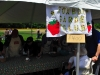 2013_4_field_activities_and_vendors_315